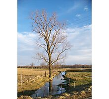 Farm Creek Photographic Print