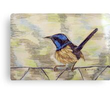 Wren on a Wire Canvas Print