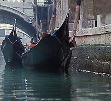 Canals of Venice by Marylou Badeaux