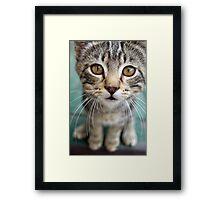 Bobblehead Framed Print