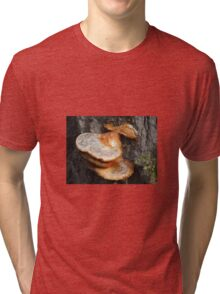 TREE MUSHROOMS Tri-blend T-Shirt