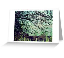 Silently Waiting for Spring Greeting Card
