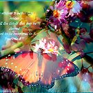 Flower And Butterfly by R&PChristianDesign &Photography