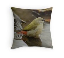Red-browed Finch immature Throw Pillow