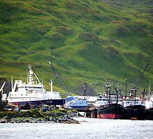 OSI Dock by lanebrain photography