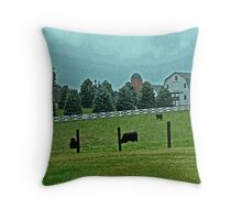 Country Painted Scene Throw Pillow