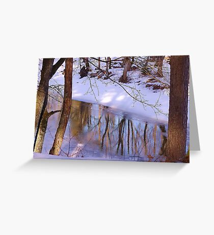 Spring reflection Greeting Card