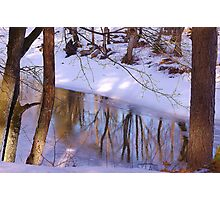 Spring reflection Photographic Print