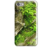 Buried through Baptism - Raised to Newness of Life~ Romans 6:4 iPhone Case/Skin