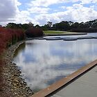 Ian Potter Lake, Cranbourne by Maggie Hegarty