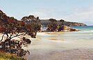 PA BEACH, GREAT BARRIER ISLAND, NEW ZEALAND.......! by Roy  Massicks