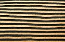 Rows of Sand by Barbara Ingersoll