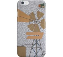 Outback Web of Flies iPhone Case/Skin