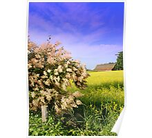 Sequim Summer ~ Olympic Peninsula, Washington Poster