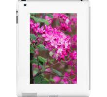 Shocking pink blossoms iPad Case/Skin