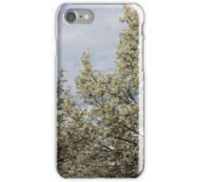 White blossoms, March sky iPhone Case/Skin