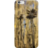 Spiky remnant of winter iPhone Case/Skin
