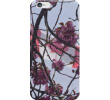 Cherry blossom over Canadian Flag iPhone Case/Skin
