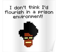 i don't think i'd flourish in a prison environment! Poster