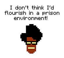 i don't think i'd flourish in a prison environment! Photographic Print