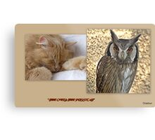 """"""" The Owl & the Pussy Cat"""" Metal Print"""
