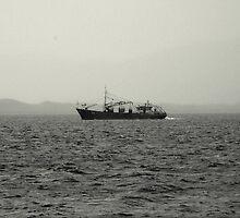 cromane bay fishing by James Cronin
