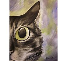 Closeup Cat Photographic Print