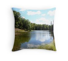 north lake Throw Pillow