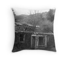 Nobody Home! Throw Pillow
