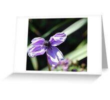 Fragility: Greeting Card