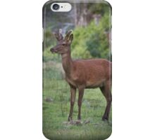 Red Deer Spiker iPhone Case/Skin