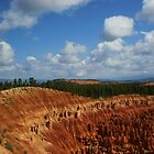 Bryce Canyon Utah #4 by Martina Fagan