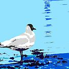 wader posterized by T Pryke