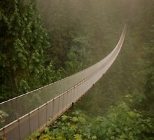Capilano Suspension Bridge-Soft Side by sulee