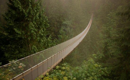 Capilano Suspension Bridge-Soft Side by sulee