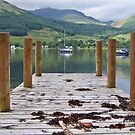 A Long Walk off a Short Pier by Lynn Bolt