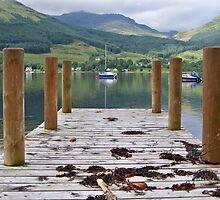 A Long Walk off a Short Pier by Lynn Bolt