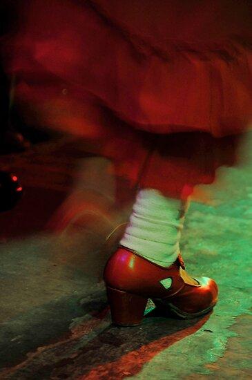 Flamenco flowing by David Roberts