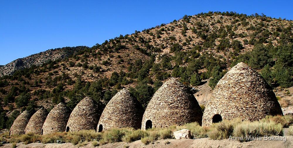 The Wildrose Charcoal Kilns by Anne-Marie Bokslag