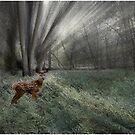 Sunlit Moment in a Floodplain Vale by Wayne King