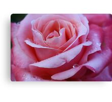 for my second mom with all my love Canvas Print