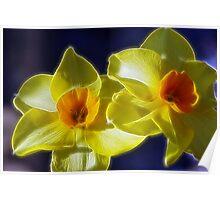 Fractilized Spring Daffodils Poster