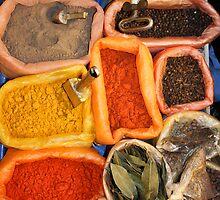 Bolivian Spices, Sucre Bolivia 2009 by Tash  Menon