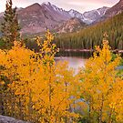 Bear Lake Vertical by Robert Yone