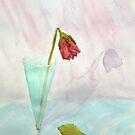 flower.... by zouzou