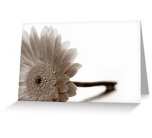 A Letter of Condolence Greeting Card