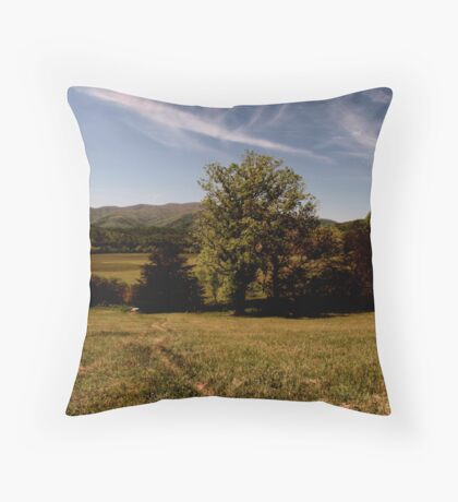 Peaceful Valley Throw Pillow