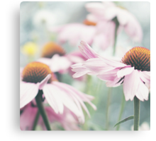 Light pink flower on the light green background Canvas Print