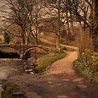 Twin Arched Pack-Horse Bridge in Colour. by mariarty
