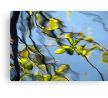 Reflections of the way life used to be Canvas Print